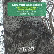 LEA Scandellara Laboratori per bambini 2-3 anni - 22 dicembre 2016