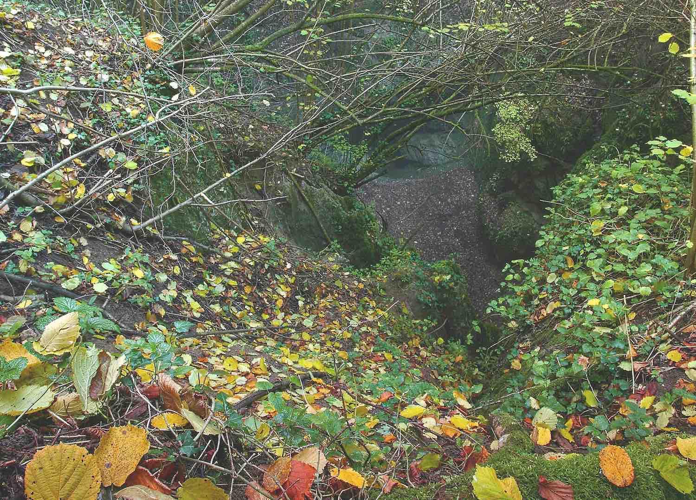 Foliage nel Parco Villa Ghigi