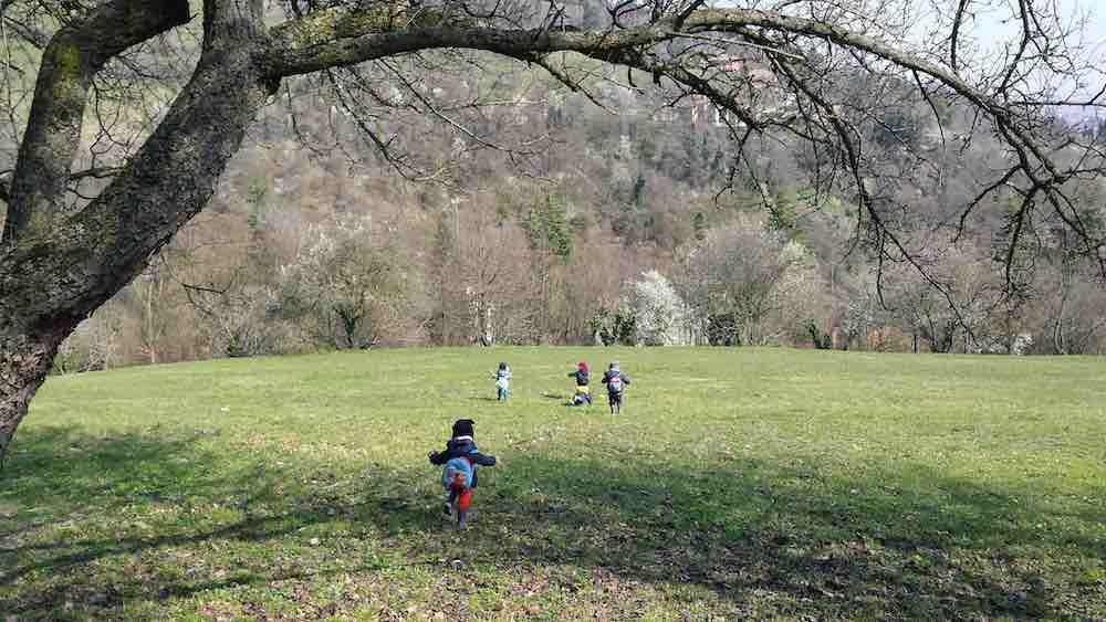 Proposte per i bimbi delle scuole infanzia nel Parco Villa Ghigi