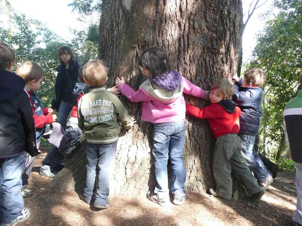 Amici alberi - Proposte per i bimbi delle scuole nel Parco Villa Ghigi